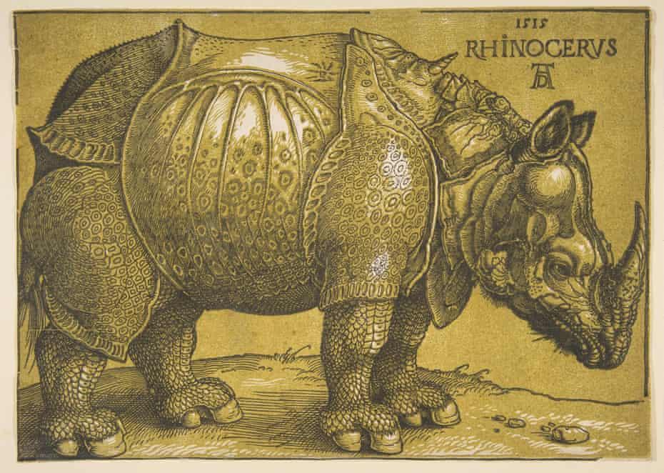 Dürer's Rhinoceros.