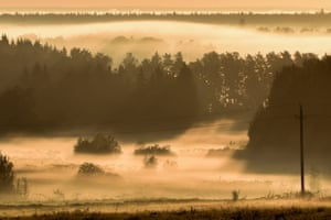 A blanket of fog covers trees and bushes near the village of Kapustino, outside Moscow, Russia