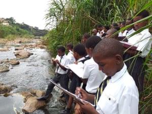 Frog fieldwork in South Africa