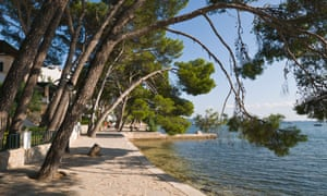 Pine Walk at Port of Pollensa, Majorca, Spain.