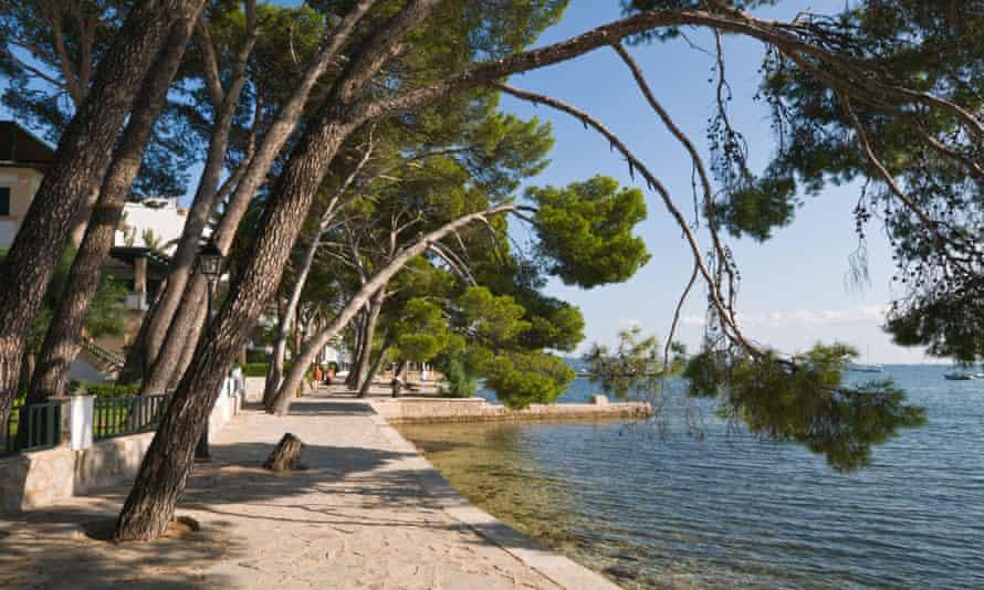 Pine Walk at Port of Pollensa, Majorca, Spain.