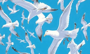 Detail from Neil Gower's illustration of gulls for As Kingfishers Catch Fire