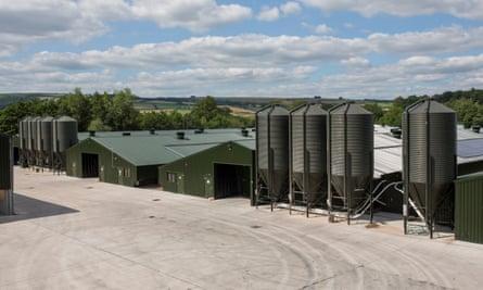 A mega farm in Kington, England.