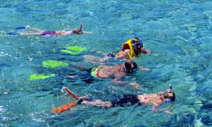 snorkelling over the Great Barrier Reef