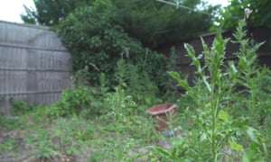 Residents say the small, overgrown patch of garden left for their use is too dangerous for children to play in.