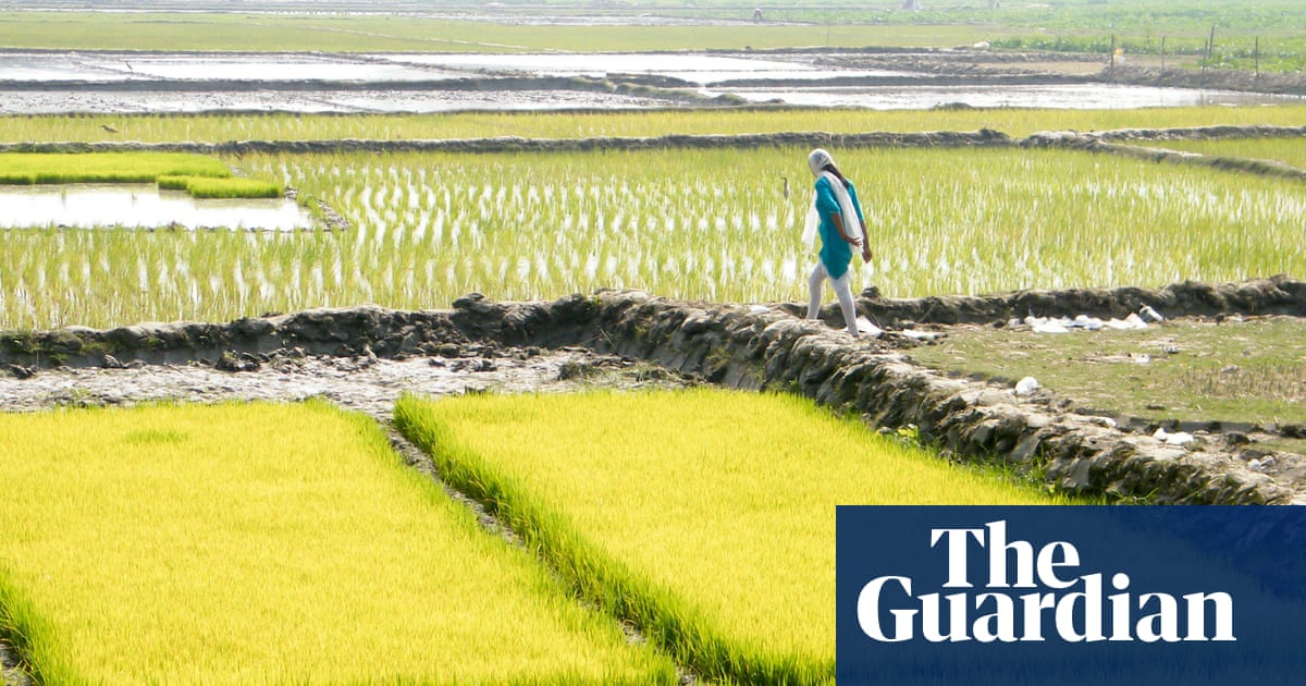 China Room by Sunjeev Sahota review – from northern England to Punjab