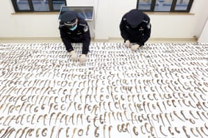Police officers count seized dried seahorses in Daishan county, Zhoushan city, Zhejiang province