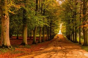 Autumn at Chatsworth Garden in Derbyshire.