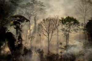 Fires in Alta Floresta, Mato Grosso state