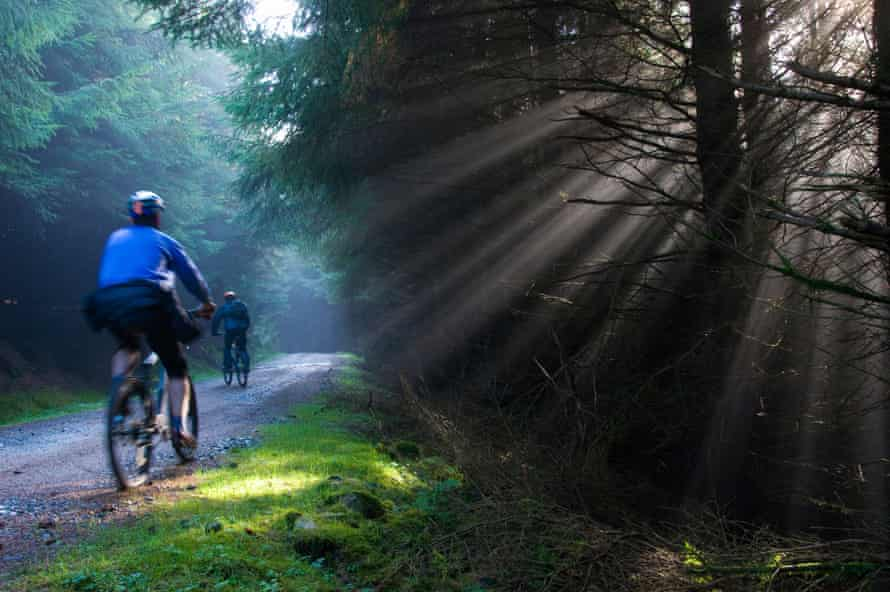 Mountain bikers in Kielder Forest, Northumberland National Park, with mist and sunbeams Image Ref CMWHNW (RM) Contributor Jon Sparks Credit line Jon Sparks / Alamy Stock Photo Date taken 1 November 2008