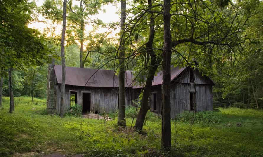 Reclaimed by nature ... the commune's habitat is an unnamed landscape of ruined dwellings.