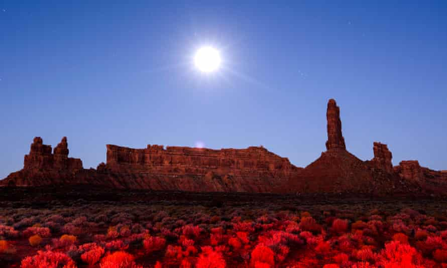 Sandstone buttes rise from the Valley of the Gods under a full moon in Bears Ears national monument, Utah, which Donald Trump reduced in size by 85%.