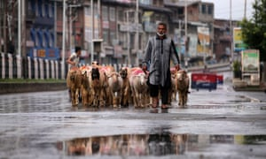 A man walks with a herd of sheep in a deserted road in Srinagar.