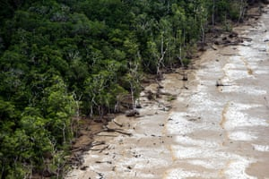 The Atlantic Ocean encroaches into the forest on the coast of Brazil