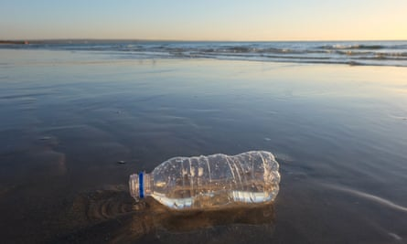 A plastic bottle littering a beach in Melbourne, Australia. More than 8m tonnes of plastic end up in our oceans each year.