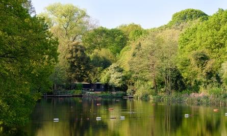 The mixed pond on Hampstead Heath.