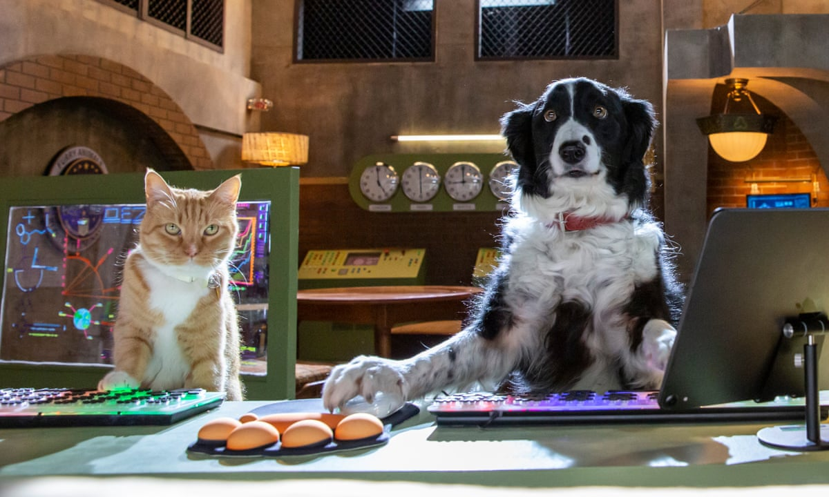 Cats Dogs Paws Unite Review Unfunny Third Instalment Of The Pet Centric Yarn Film The Guardian