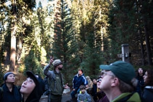 A tour group learn about the trees from a Sequoia national park ranger.