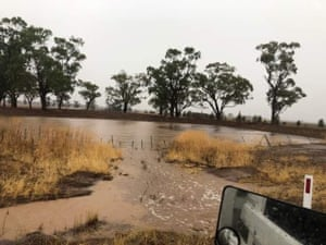 Desperately needed rain falls in north-western NSW