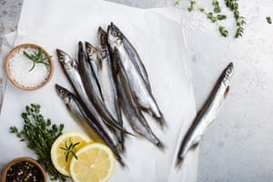 Oily fish such as capelin are key to the Icelandic diet