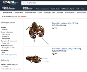 Live lobsters for sale on Amazon