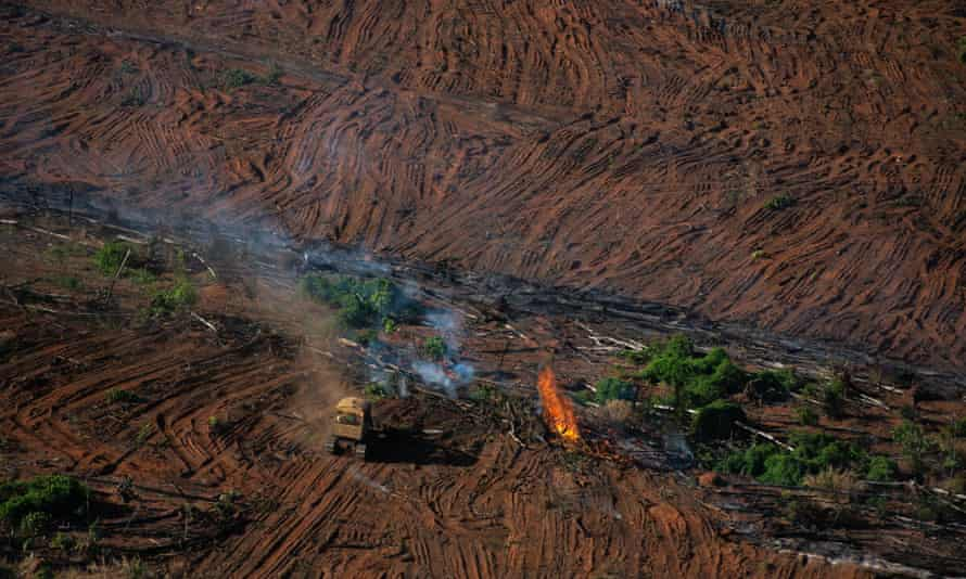 More than 11,000 sq km of rainforest was destroyed in Brazil between between August 2019 and July 202o, official figures show.