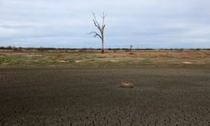 A nearly dried up dam in the drought-stricken NSW and Queensland border town of Mungindi.