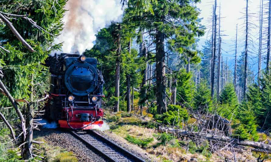 Harz national park, Germany.