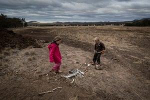 Heidi, 7, and Harry Taylor play near the bones of dead livestock on their family farm.