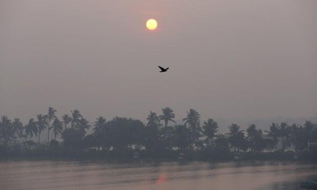 Wetlands, Kolkata.