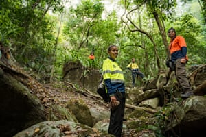 Indigenous field workers in wet tropics world heritage area in Queensland.