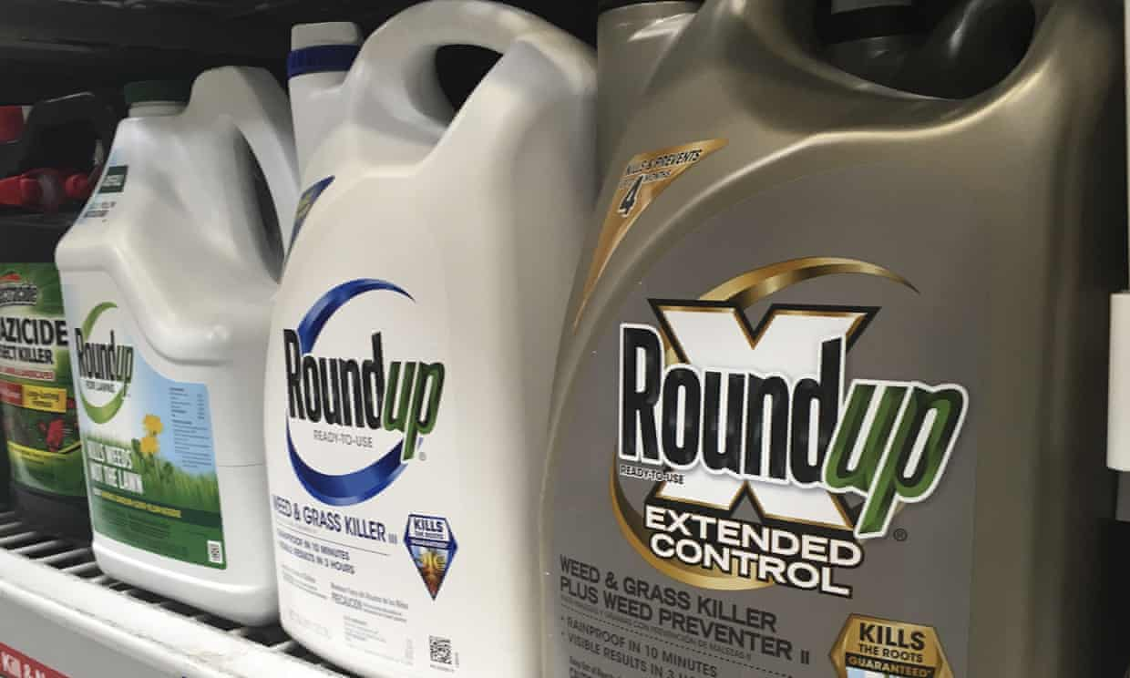 Trump EPA declares that Roundup doesn't cause cancer, despite thousands of lawsuits