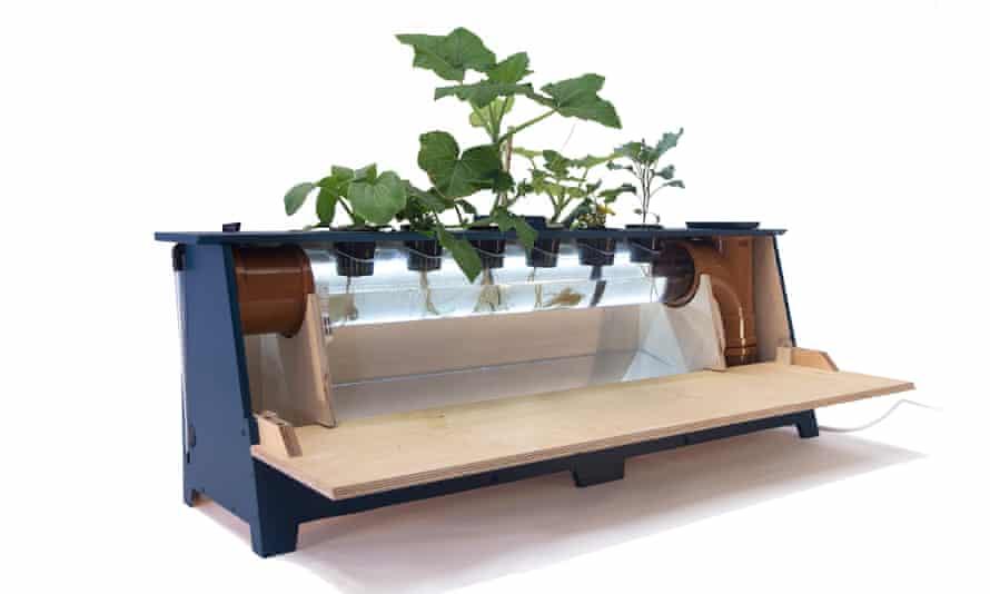 A hydroponics unit