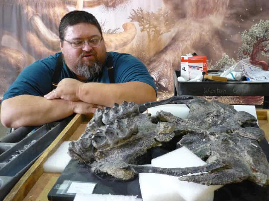 Dr. Alton Dooley Jr. of the Western Science Center with a 14m-year-old Zygolophodon fossil from the Alf Museum.