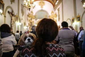 Sao Paulo, Brazil A pet owner holds her dog as she attends the mass on the Day of St. Francis of Assisi, the saint is known in the Catholic religion belief as the animals protector