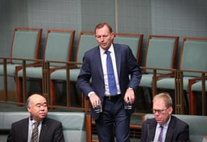 Tony Abbott during question time in the House of Representatives.