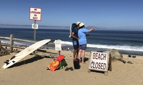 The Cape Cod shark attack is a terrible reminder of our