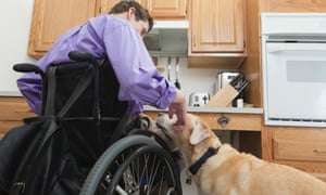 Wheelchair user with an assistance dog