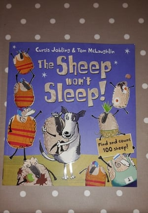"<a href=""https://bookshop.theguardian.com/catalog/product/view/id/330439/""><strong>The Sheep Won't Sleep by Curtis Jobling</strong></a><br><a href=""https://witness.theguardian.com/user/snowymum"">Reviewed by Claire, Lucy and Erin</a><br>We love the simple story of a weary sheepdog putting his flock to bed is both really funny and a little bit educational (I mean, when would you normally count to one hundred before bedtime?). We love the way the story ebbs and flows between the sleepy farm and the crazy antics of the sheep. Tom McLaughlin's illustrations are so funny (look at the rabbits's faces after the sheep have commandeered their burrow!) If you like sheep and like counting, this is certainly the book for you!"