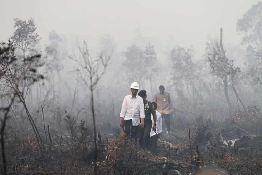 Indonesian President Joko Widodo visits the burned forest at Pulo Keronngan village in Ogan Komering Ilir, South Sumatra province