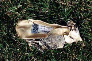 Metal debris with American Airlines markings