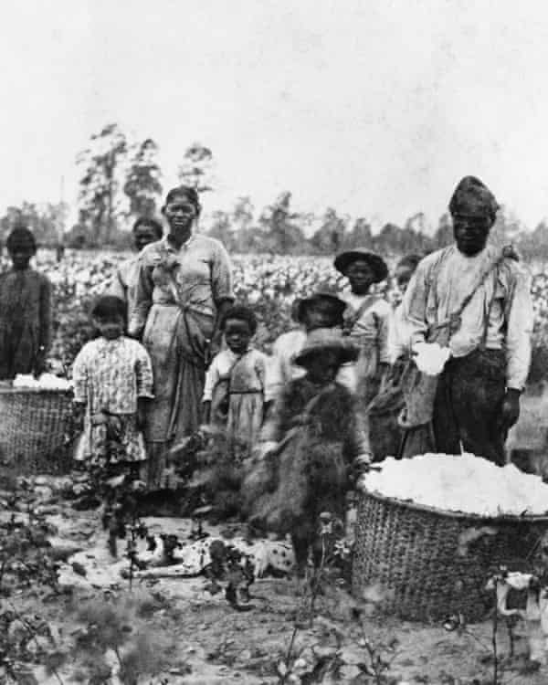 Slave Family In Cotton Field