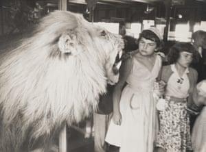 nyc 1953
