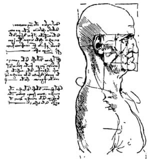 Leonardo's study of the proportions of a human head