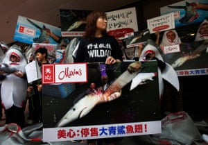 Protestors from environmental group WildAid campaign against the use of shark fins outside a Maxim's restaurant on Hong Kong University campus