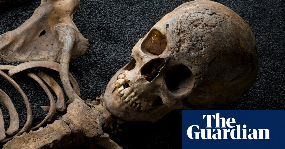 A Tale Of Four Skulls What Human Bones Reveal About Cities Cities