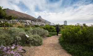 Green Point Park, Cape Town, South Africa.
