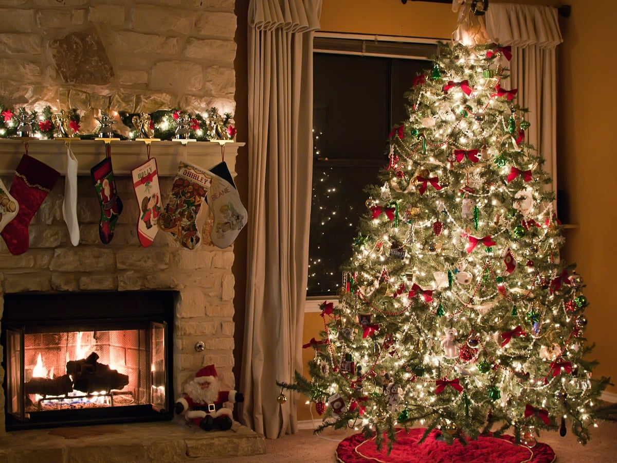 Real Christmas Trees Are The Greener Choice John Rudolf Opinion The Guardian
