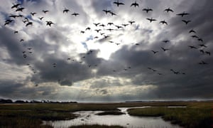 Sky above Pagham harbour