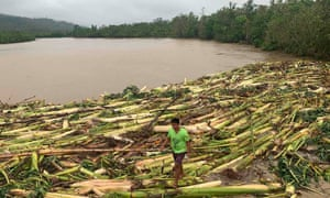 A resident walks past uprooted banana trees after Typhoon Molave hit Pola, Philippines